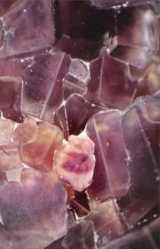 Calcium fluoratum D12 Schüßler-Salz, Globulix, Katrin Reichelt, Schüßler-Salze
