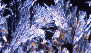 Nr. 5, Kalium phosphoricum D6, Globulix, Katrin Reichelt, Schüßler-Salze
