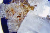 Schüßler-Salze, Erkältung, Kalium chloratum, Globulix, Katrin Reichelt, Schüßler-Salze, Schleimhäute