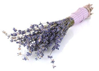 Lavendel, Lavendelös, Entspannung, Fußpilz Motten