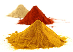 Curry, Currywust, Curry Queen, Laktose-Intolerant, Globuli Homöopathie, Globulix