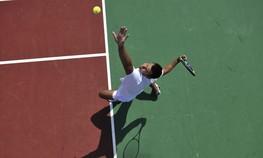 Sabine Lisicki, Novak Djokovic, glutenfrei, Diät, Glutenintoleranz, Tennis, Glutenallergie, Ernährung, Elisabeth Lisicki