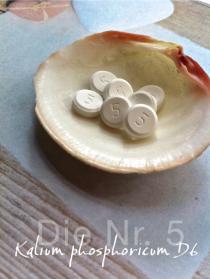 Kalium phosphoricum D6, Tabletten, Globulix, Katrin Reichelt, Schüßler-Salze