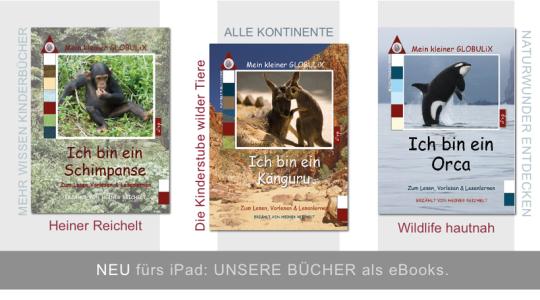 Heiner Reichelt, In der Kinderstube der wilden Tiere, Schimpanse, Orca, Känguru, Globulix