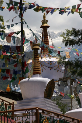 Dharamsala, Karmapa, Barbara Nath-Wiser, Indien, Homöopathie